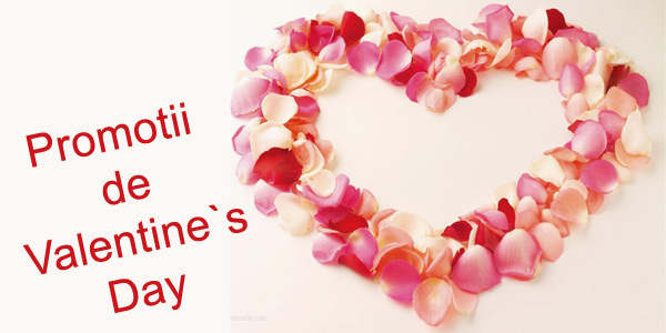 Valentine`s Day 2013